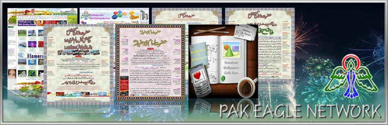 Pak Eagle Enterprises Network